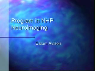 Program in NHP Neuroimaging