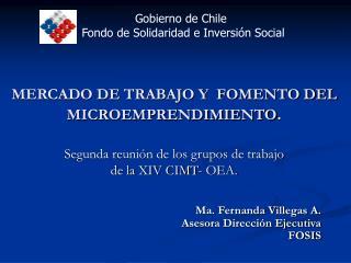 Ma. Fernanda Villegas A. Asesora Dirección Ejecutiva FOSIS