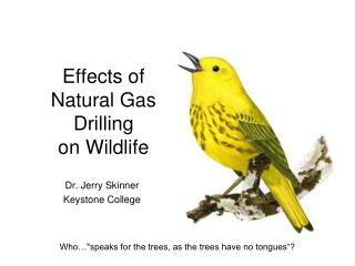 Effects of Natural Gas Drilling  on Wildlife