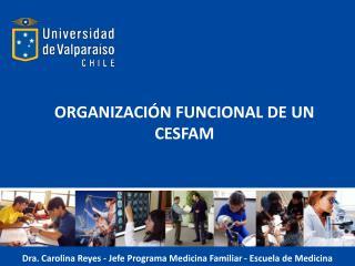 ORGANIZACIÓN FUNCIONAL DE UN CESFAM