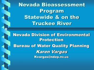Nevada Bioassessment Program Statewide  on the Truckee River