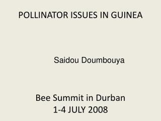POLLINATOR ISSUES IN GUINEA Bee Summit in Durban 1 -4 JULY 2008