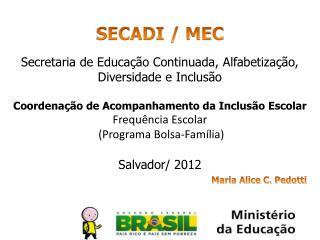 SECADI / MEC Secretaria de Educação Continuada, Alfabetização, Diversidade e  Inclusão