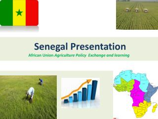 Senegal Presentation African  Union  Agriculture Policy  Exchange and  learning