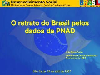 O retrato do Brasil pelos dados da PNAD