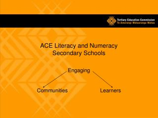 ACE Literacy and Numeracy Secondary Schools