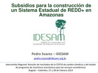 Pedro Soares – IDESAM pedro.soares@idesam.br