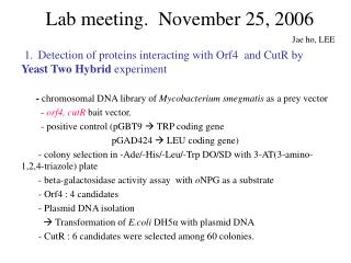 Lab meeting.  November 25, 2006