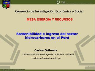 Sostenibilidad e ingreso del sector hidrocarburos en el Perú