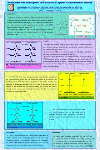 Multinuclear NMR investigation of the anisotropic system NaDNA/Ethidium Bromide