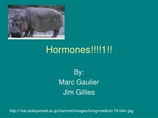 Hormones!!!!1!!