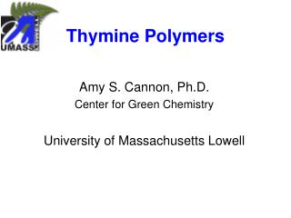 Thymine Polymers