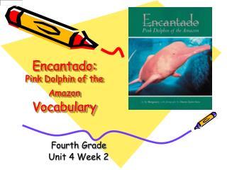 Encantado:  Pink Dolphin of the Amazon Vocabulary