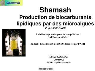 Shamash  Production de biocarburants lipidiques par des microalgues Projet ANR-PNRB