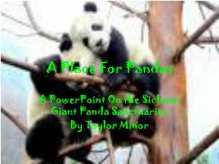 A Place For Pandas