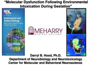 Darryl B. Hood, Ph.D. Department of Neurobiology and Neurotoxicology