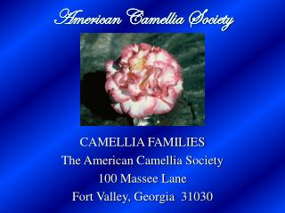 American Camellia Society
