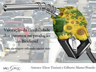 Valoração da flexibilidade dos insumos na produção do Biodiesel