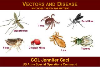 COL Jennifer  Caci US Army Special Operations Command