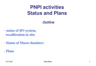 PNPI activities Status and Plans