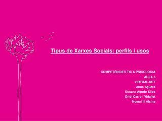 MAPA CONCEPTUAL-XARXES SOCIALS