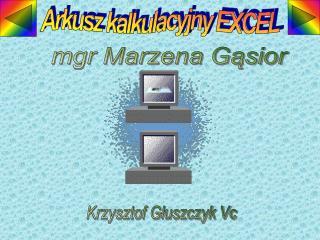 Arkusz kalkulacyjny EXCEL