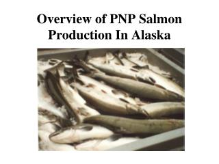 Overview of PNP Salmon Production In Alaska