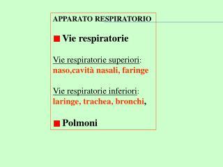 APPARATO RESPIRATORIO  Vie respiratorie Vie respiratorie superiori :  naso,cavità nasali, faringe
