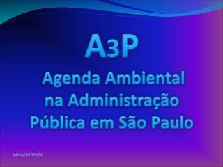 A 3 P Agenda Ambiental na Administração Pública em São Paulo
