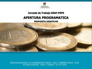 Jornada de Trabajo DSAF-PEPS APERTURA PROGRAMATICA  PROPUESTA AGOSTO/09
