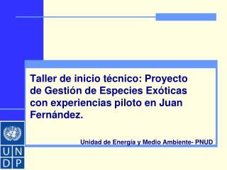 Unidad de Energía y Medio Ambiente- PNUD