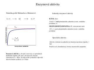 Enzymová aktivita