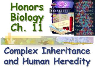 Honors Biology Ch.  11