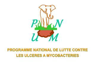 PROGRAMME NATIONAL DE LUTTE CONTRE LES ULCERES A MYCOBACTERIES