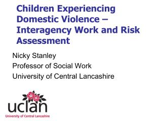 Children Experiencing Domestic Violence   Interagency Work and Risk Assessment