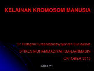 PKG Kromosom Kelainan Numerik  : Perubahan pada jumlah kromosom A. Set Kromosom