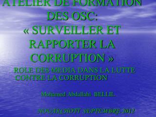 PNUD & TI ATELIER DE FORMATION DES OSC: « SURVEILLER ET RAPPORTER LA CORRUPTION »