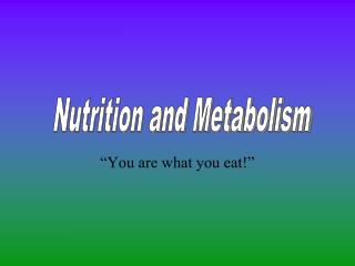 """""""You are what you eat!"""""""