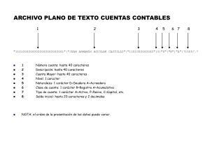ARCHIVO PLANO DE TEXTO CUENTAS CONTABLES