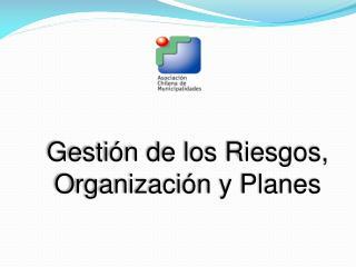 Gestión de los Riesgos, Organización y Planes
