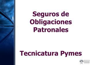 Seguros de Obligaciones Patronales Tecnicatura Pymes