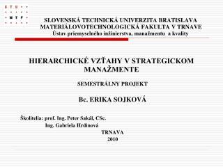 SEMESTRÁLNY PROJEKT Bc. ERIKA SOJKOVÁ Školitelia: prof. Ing. Peter Sakál, CSc.