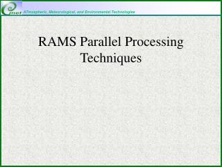 RAMS Parallel Processing Techniques