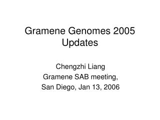 Gramene Genomes 2005 Updates
