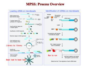 MPSS: Process Overview