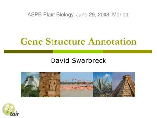Gene Structure Annotation