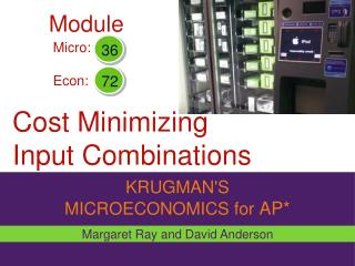 Cost Minimizing Input Combinations