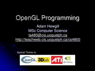OpenGL Programming