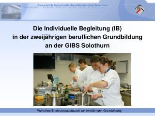 Die Individuelle Begleitung (IB)  in der zweijährigen beruflichen Grundbildung