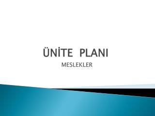 ÜNİTE  PLANI